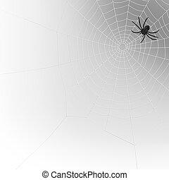 spider web - spider on a spiderweb