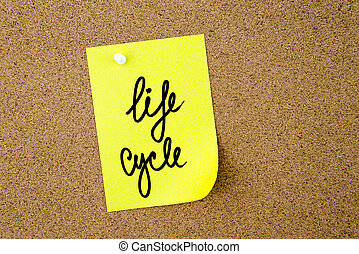 Life Cycle written on yellow paper note pinned on cork board...