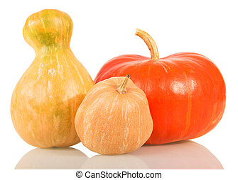 Set mature pumpkins of different shapes isolated on white -...