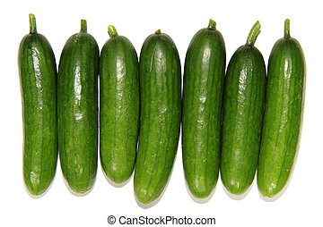 Young cucumbers-Cucumis sativus - Cucumbers are like pickles...