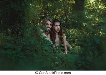 familia, establecidas, en, el, forest.,