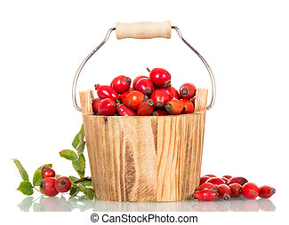 Small wooden bucket filled with fresh rose hip berries isolated.