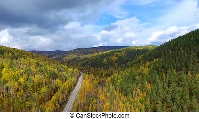 A bird's-eye aerial flight over the road autumn forest....