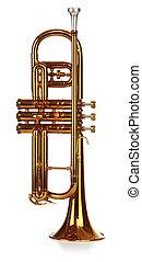 Coronet - Brass cornet standing upright, short on white...