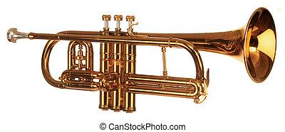 Coronet iso - brass cornet shot at slight angle on white...