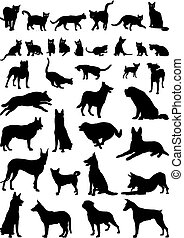 Cats and dogs - Vector illustrations of domestic cats and...