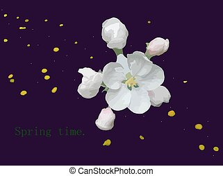 Spring-time-4 - Spring background, apple-tree flowers, and...