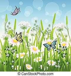 Flower meadow in summer with butterfly