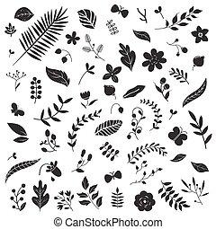 Botanical elements set.