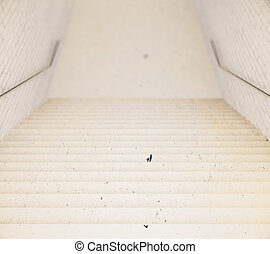 Stairs leading to empty floor