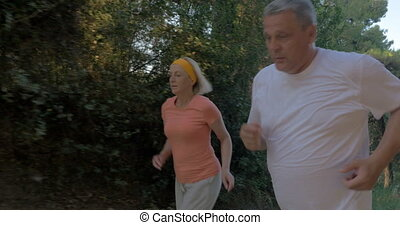 Mature couple jogging in the forest - Steadicam shot of...