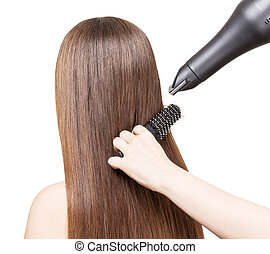Drying long brown hair with hairdryer and comb isolated. -...