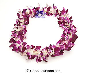 Hawaiian Lei - PolynesianHawaiian lei shot on white