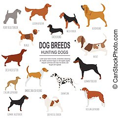 Dog breeds. Hunting dog set icon. Flat style. Vector...