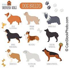 Dog breeds. Shepherd dog set icon. Flat style. Vector...
