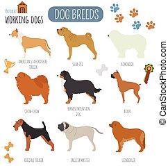 Dog breeds. Working (watching) dog set icon. Flat style....