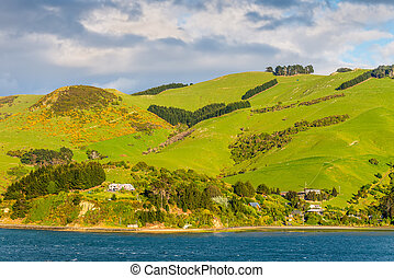 New Zealand Otago Region coastal landscape - Rural Scene and...