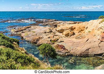 New Zealand colorful coast landscape - New Zealand colorful...