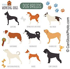 Dog breeds Working watching dog set icon Flat style Vector...