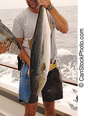 tuna fisherman - Sport fisherman holding a tuna