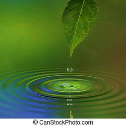 água, ondulação