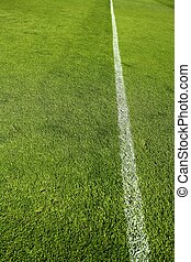 football grass field camp texture wite line - football green...