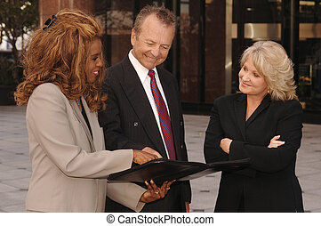 Professionals - Two professional women and one businessman...