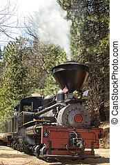 Locomotive Vertical - Vertical shot of a vintage steam...