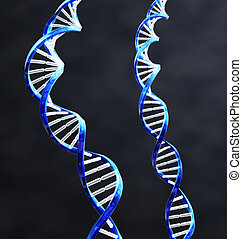 Double Helix - 2 double helix strands of DNA with Dark...