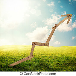 Sustainable development - Wooden arrow with a meadow...