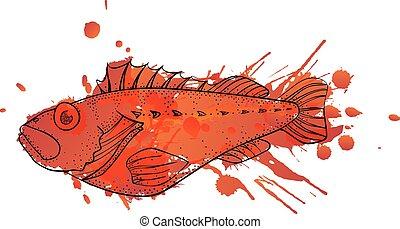 Grunge ocean perch illustration
