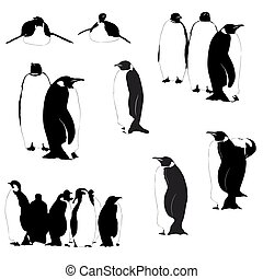 Vector penguin silhouettes on the white