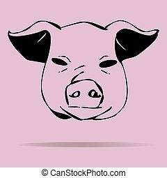 Pigs vector illustration