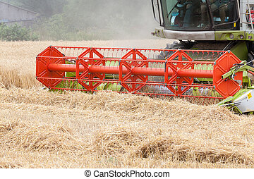 Cutterbars on a combine harvester harvesting a crop of wheat, close up