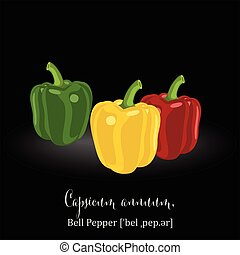 Bell Pepper. - Organic Food Icon. Bell Pepper. Vector...