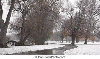 Snow Storm at Public Park
