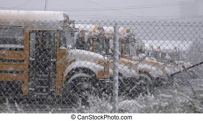 School Buses During Snow Storm