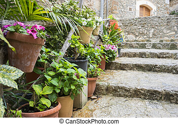 flowerpots street in the tourist island of Mallorca,...