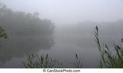 Lake on Foggy Morning