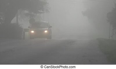 Car Driving Through Fog