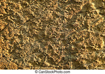 Limestone closeup view with visible texture.