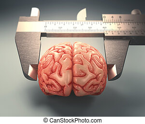Measuring The Human Intelligence - Caliper ruler measuring a...