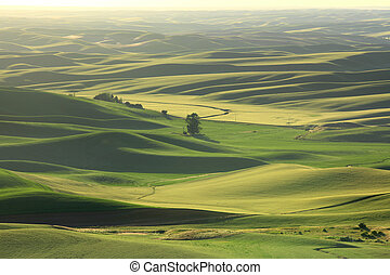 Palouse landscape - Rolling hills in Washington state at...
