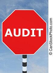 Audit Consultancy concept