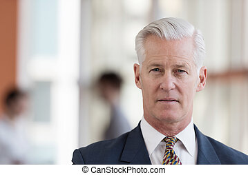 portrait of handsome senior business man at modern office -...
