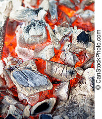 Background of Live Coals - Background of Big Pieces of Live...