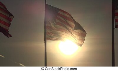 American Flags at Dusk or Dawn