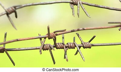 Rusty barbed wire sways in the wind