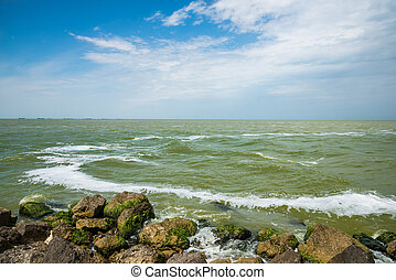 Coast of the Azov Sea