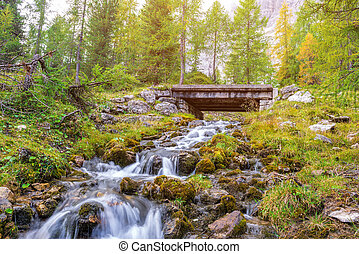 Beautiful mountain stream in the Dolomites